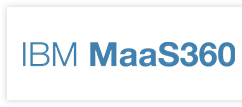 IBM Mass 360